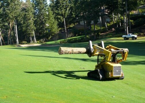 Golf Course Loader